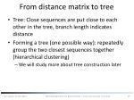from distance matrix to tree