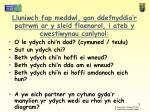 lluniwch fap meddwl gan ddefnyddio r patrwm ar y sleid flaenorol i ateb y cwestiwynau canlynol