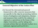 general objective of the action plan