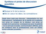 synth se et pistes de discussion possibles