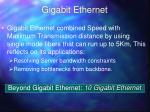 gigabit ethernet1