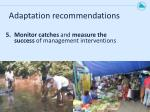 adaptation recommendations4