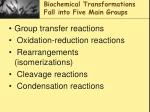 biochemical transformations fall into five main groups
