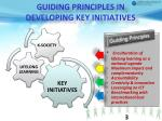 guiding principles in developing key initiatives