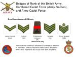 badges of rank of the british army combined cadet force army section and army cadet force1