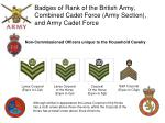 badges of rank of the british army combined cadet force army section and army cadet force2
