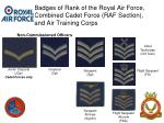 badges of rank of the royal air force combined cadet force raf section and air training corps2