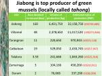 jiabong is top producer of green mussels locally called tahong