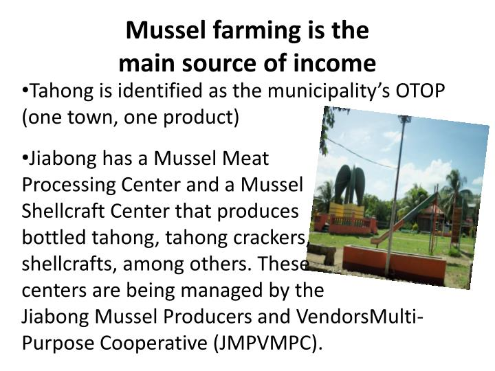 Mussel farming is the