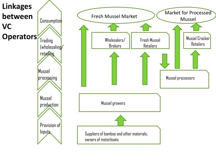 Market for Processed  Mussel