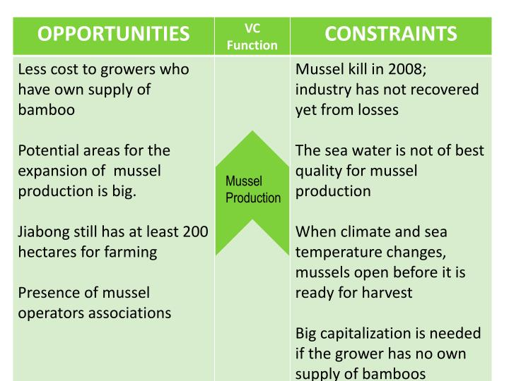 Mussel Production