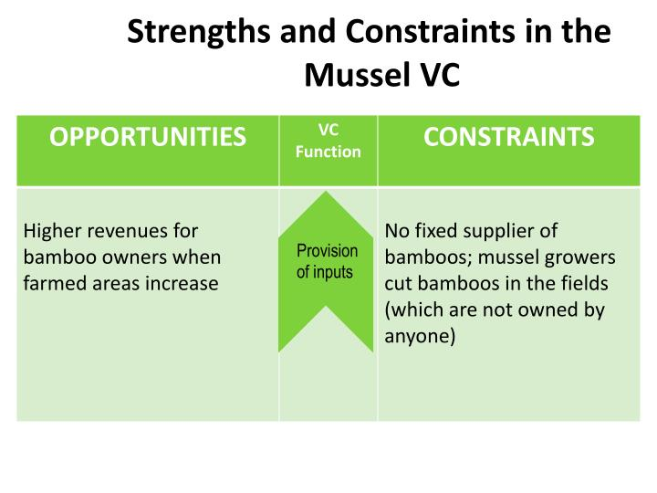 Strengths and Constraints in the Mussel VC