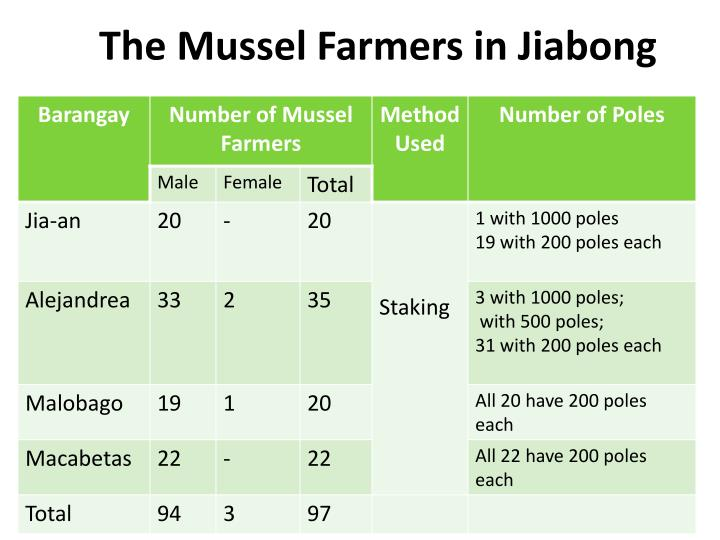 The Mussel Farmers in Jiabong
