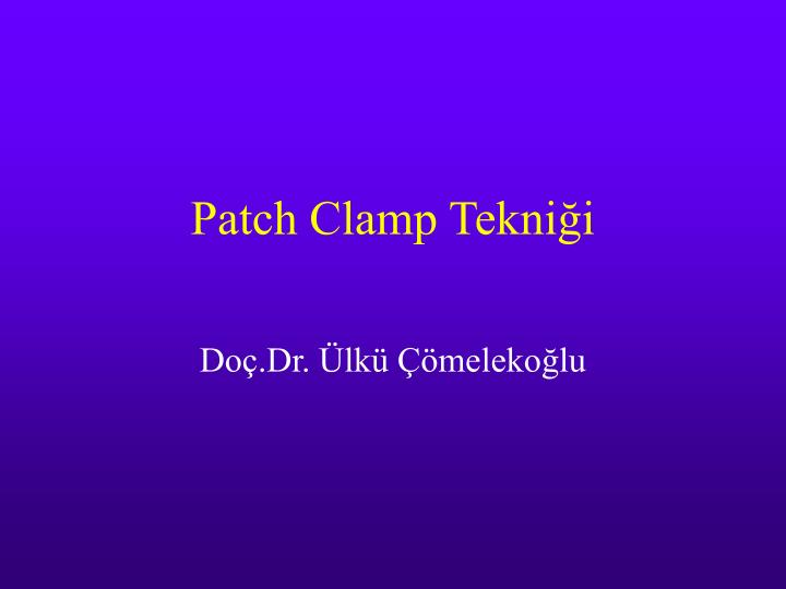 patch clamp tekni i n.