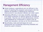 management efficiency1