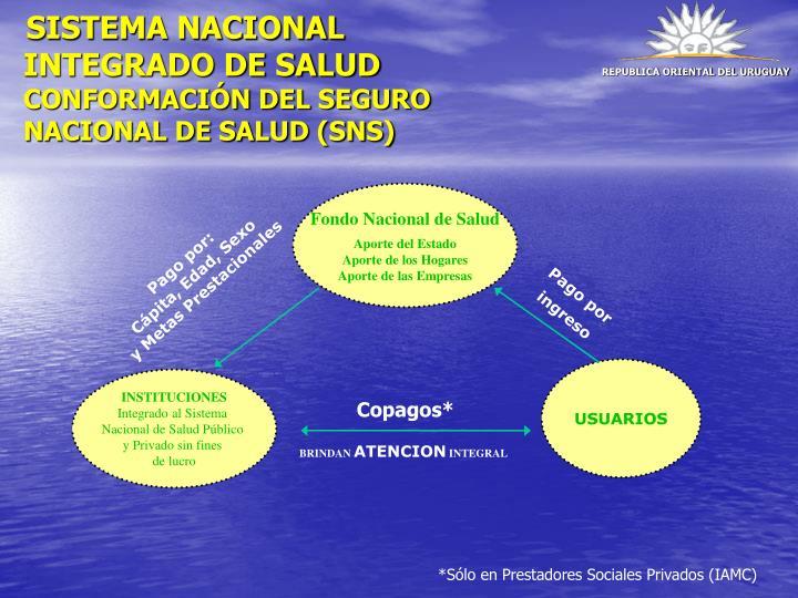 SISTEMA NACIONAL INTEGRADO DE SALUD