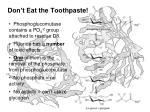 don t eat the toothpaste