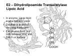 e2 dihydrolipoamide transacetylase lipoic acid