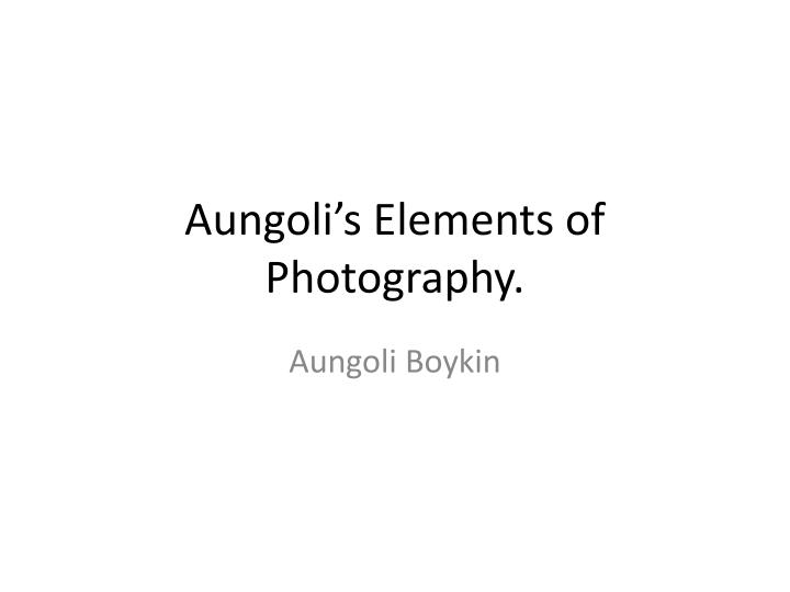 aungoli s elements of photography n.