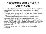 requeening with a push in queen cage