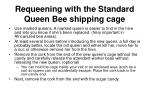 requeening with the standard queen bee shipping cage