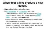when does a hive produce a new queen