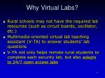 why virtual labs