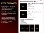 vzor protokolu1