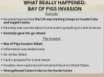 what really happened bay of pigs invasion