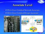 associate level