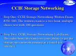ccie storage networking