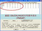 buckling pmsap1