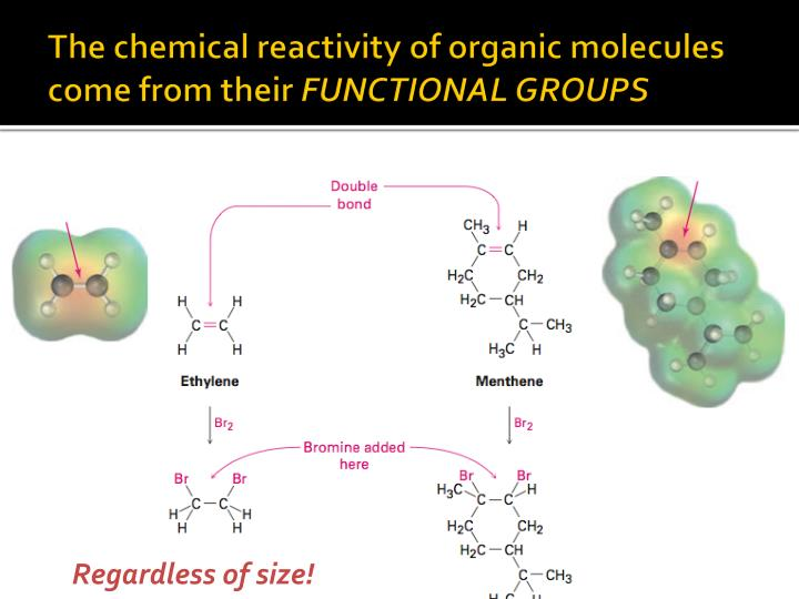 the chemical reactivity of organic molecules come from their functional groups n.