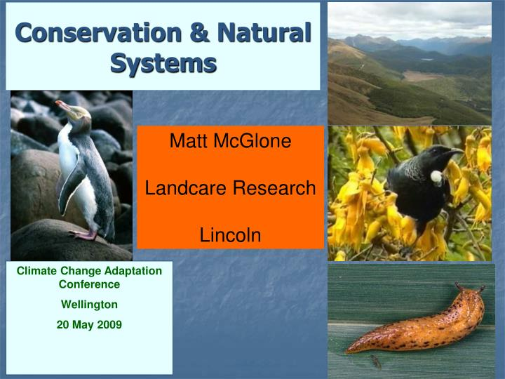 conservation natural systems n.