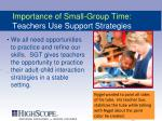 importance of small group time teachers use support strategies