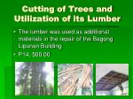 cutting of trees and utilization of its lumber