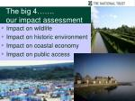 the big 4 our impact assessment