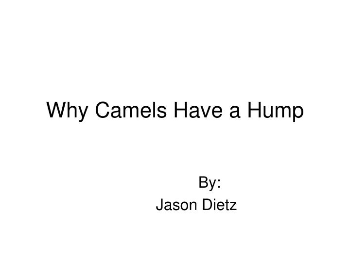 why camels have a hump n.