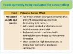 foods currently being evaluated for cancer effect1