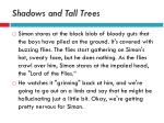 shadows and tall trees15