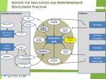 institute for innovation and entrepreneurship development function