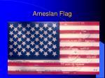 ameslan flag