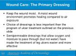 wound care the primary dressing