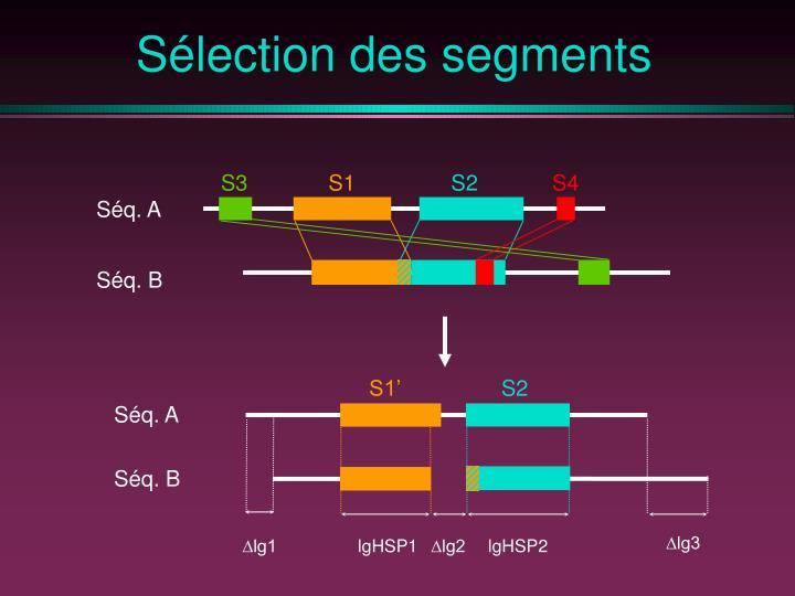 Sélection des segments