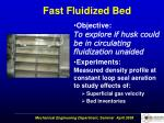fast fluidized bed