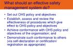 what should an effective safety management system do