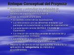 enfoque conceptual del proyecto