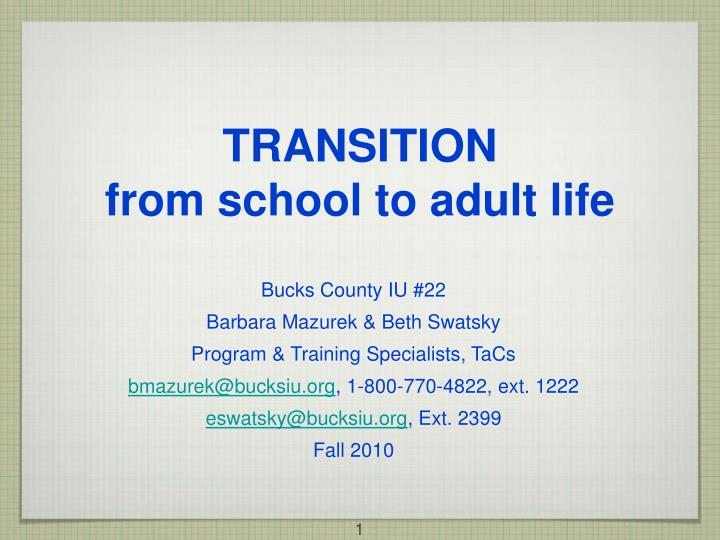 transition from school to adult life n.
