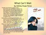 what can t wait by ashley hope perez