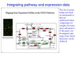 integrating pathway and expression data